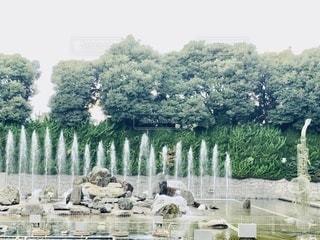 噴水の饗宴の写真・画像素材[3485416]
