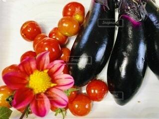 食べ物,風景,屋内,カラフル,フラワー,野菜,ミニトマト,食品,たくさん,テーブルフォト,俯瞰,お気に入り,ライフスタイル,ダリア,食材,クローズアップ,夏野菜,採れたて,フレッシュ,生野菜,ベジタブル,ナス,色々,花のある生活,配置,採れたて野菜,ベジタブル花