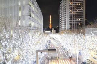 イルミネーションのキラキラの奥に東京タワーの写真・画像素材[919069]