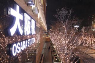 建物,夜,屋外,大阪,樹木,イルミネーション,都会,ライトアップ,明るい,大阪駅,ダウンタウン,シャンパンゴールド