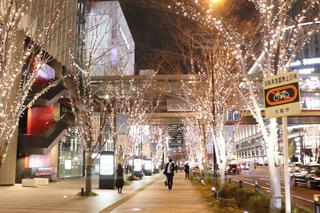 建物,冬,夜,屋外,散歩,樹木,都会,ライトアップ,照明,明るい,通り,夜散歩,シャンパンゴールド,クリスマス ツリー