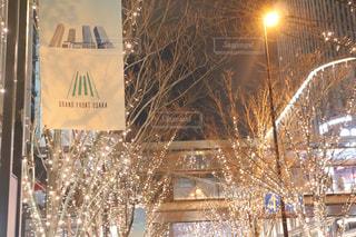 冬,夜,夜景,屋外,樹木,ライトアップ,明るい,シャンパンゴールド