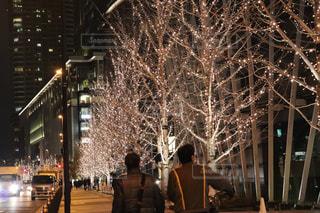 男性,友だち,2人,風景,冬,夜,夜景,屋外,散歩,樹木,イルミネーション,都会,ライトアップ,人,明るい,散歩道,通り,シャンパンゴールド