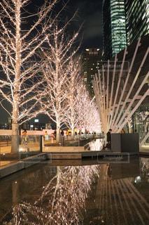 建物,夜,屋外,散歩,水面,反射,樹木,イルミネーション,都会,ライトアップ,高層ビル,通勤,明るい,散歩道,帰り道,景観,帰宅,シャンパンゴールド