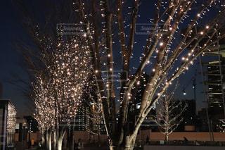 夜,夜景,夜空,屋外,光,イルミネーション,ライトアップ,照明,駅前,明るい,景観,丸ボケ,星屑