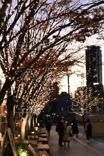 空,建物,冬,ビル,屋外,カラフル,夕焼け,夕暮れ,アート,都市,週末,手持ち,樹木,イルミネーション,都会,ライトアップ,道,人,高層ビル,クリスマス,オブジェ,サンセット,デート,ビル群,12月,クリスマスイルミネーション,街路灯