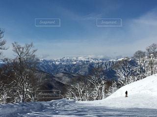 雪,白い,スキー場,たんばらスキー,たんばら高原