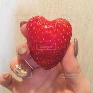 赤い果実を持っている手の写真・画像素材[922184]
