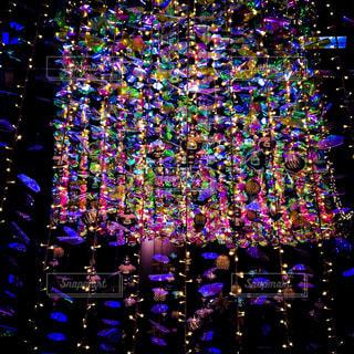 カラフル,イルミネーション,ライトアップ,colorful,illumination,クリスマスイルミネーション,近未来的,カラフルイルミネーション,近未来的イルミネーション
