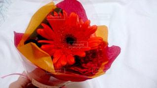 花,赤,花束,フラワーアレンジメント,flower,colorful