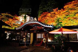 紅葉真っ盛りの温泉寺の写真・画像素材[1640160]