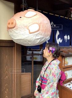 豚と着物と私の写真・画像素材[923655]