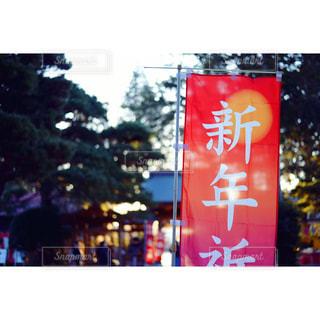 新年の幟の写真・画像素材[964487]