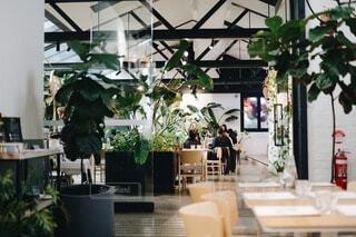 植物に囲まれての写真・画像素材[3929995]