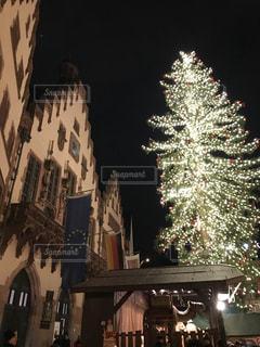海外,綺麗,ヨーロッパ,美しい,クリスマス,ドイツ,クリスマスツリー,クリスマスマーケット,フランクフルト