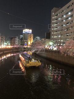 桜 夜桜 屋形船 春 情緒 日本 横浜