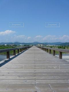 橋,静岡,木造,蓬莱橋,島田市,木の橋