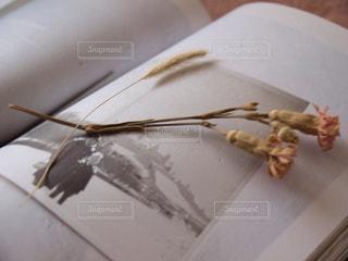 フォークとナイフを皿の上のケーキの一部の写真・画像素材[737423]