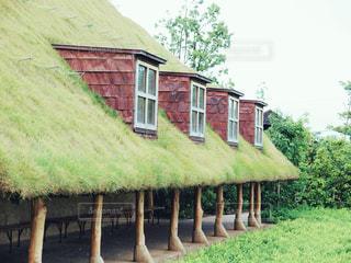 緑の家 - No.1174762