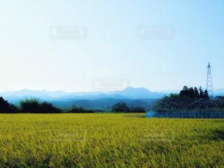 田んぼ、石川県の写真・画像素材[1393641]