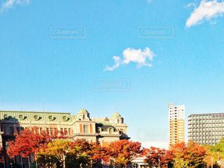 秋の空の写真・画像素材[1629623]