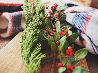 クリスマスリースの材料の写真・画像素材[1663061]