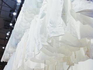 ファッション,白,衣服,シャツ,ホワイト,白シャツ,服飾