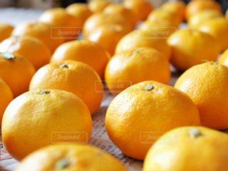 鮮やか,オレンジ,フルーツ,果物,みかん,新鮮,柑橘類