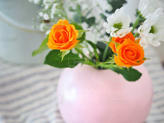 花のある暮らしの写真・画像素材[2143440]