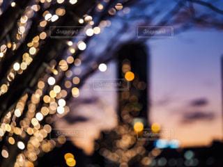 空,夜,木,夕焼け,枝,ぼかし,イルミネーション,都会,明るい