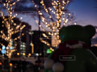 空,大阪,樹木,イルミネーション,人,オブジェ,梅田,明るい,グランフロント