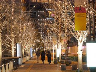 冬,夜,屋外,大阪,街,樹木,イルミネーション,都会,照明,明るい,通り,グランフロント大阪,シャンパンゴールド