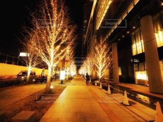 建物,夜,ビル,木,大阪,道路,樹木,イルミネーション,歩道,明るい,ショッピングモール,グランフロント大阪