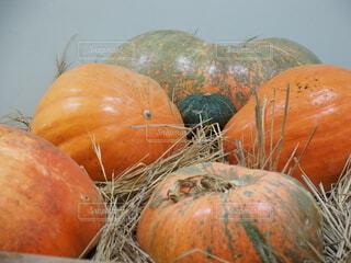 食べ物,風景,秋,オレンジ,野菜,かぼちゃ,食品,食材,フレッシュ,ベジタブル,カボチャ,トリック・オア・トリート,セイヨウカボチャ