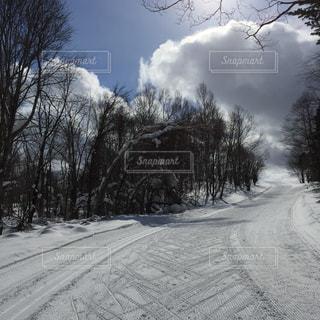 クロスカントリースキーコース登り辛いけど晴天気持ちいいの写真・画像素材[942633]