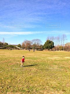 公園,屋外,子供,走る,休日,お出かけ