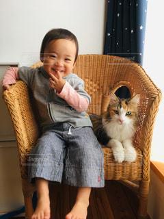 猫と子の写真・画像素材[2070419]