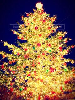 冬,屋外,カラフル,キラキラ,クリスマス,クリスマスツリー