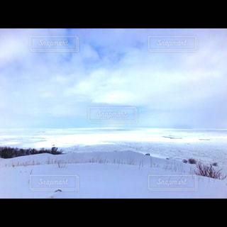 雪の中で雲のグループの写真・画像素材[1013107]