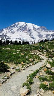 自然,アウトドア,森林,雪山,アメリカ,トレッキング,旅行,休日,ネイチャー,マウントレイニア