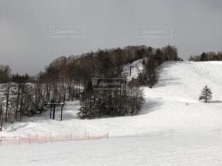 元旦のスキー場の写真・画像素材[941429]