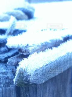 雪のような白の写真・画像素材[933779]
