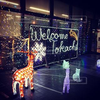 冬,夜,北海道,イルミネーション,クリスマス,トナカイ,北海道旅行,クリスマスの思い出,帯広空港,とかち帯広空港