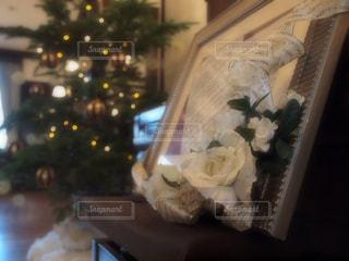 冬,室内,イルミネーション,クリスマス,クリスマスツリー