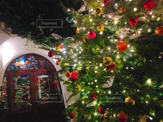 カラフル,綺麗,イルミネーション,キラキラ,クリスマス,ツリー,ほっこり,世界