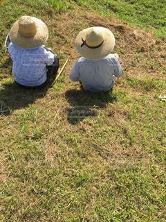 草に覆われた野原の上に座っているテディベアの写真・画像素材[2445439]