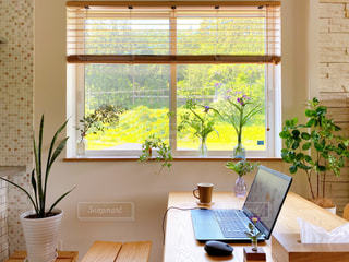 リビングの窓際でお仕事の写真・画像素材[3217467]
