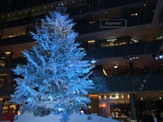 冬,きれい,幻想的,クリスマス,ツリー,KITTE