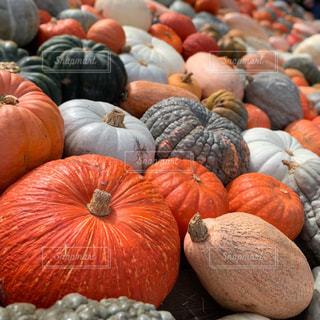 ハロウィンのかぼちゃ祭りの写真・画像素材[2509155]