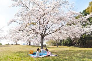 可愛いピクニックショット♡の写真・画像素材[3099199]